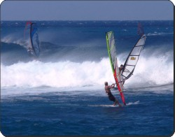 Wind Surfers, SPO-WS3