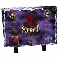 Scorpio Star Sign of the Zodiac Photo Slate Christmas Gift Idea