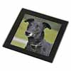 Black Greyhound Dog Glass Coaster with Black Rim