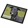 Black Greyhound Dog Glass Placemat with Black Rim