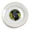 Black Greyhound Dog Gold Leaf Rim Plate n Gift Box