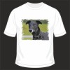 Black Greyhound Dog Cotton T-Shirt