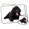 Black Labradoodle Dog Twin Placemat and Coasters Set