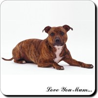 "Staffordshire bull Terrier ""Love You Mum..."" Single leather Coaster Gift"